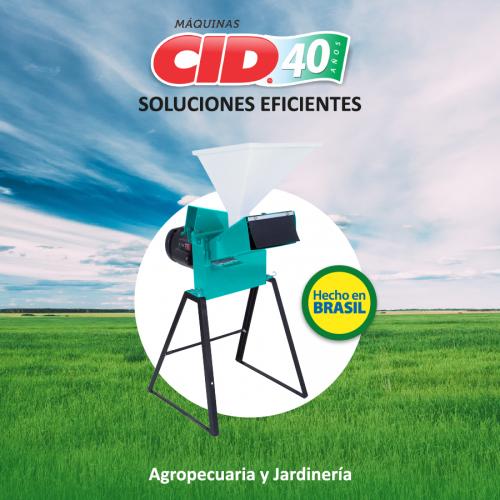 CID-2019-06-25