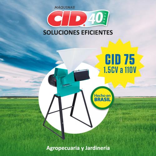 CID-2020-08-13