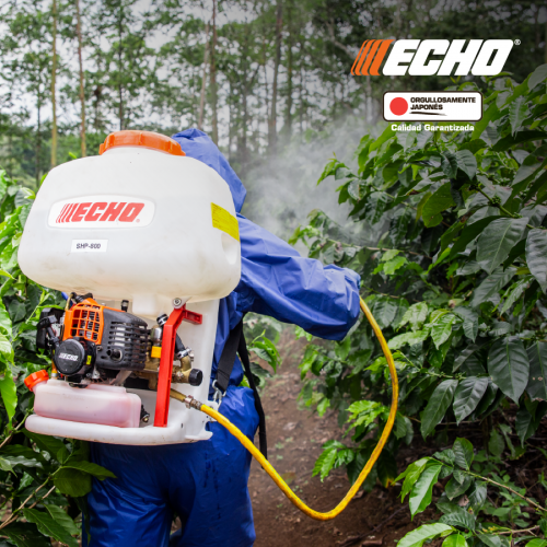 ECHO-2020-02-12
