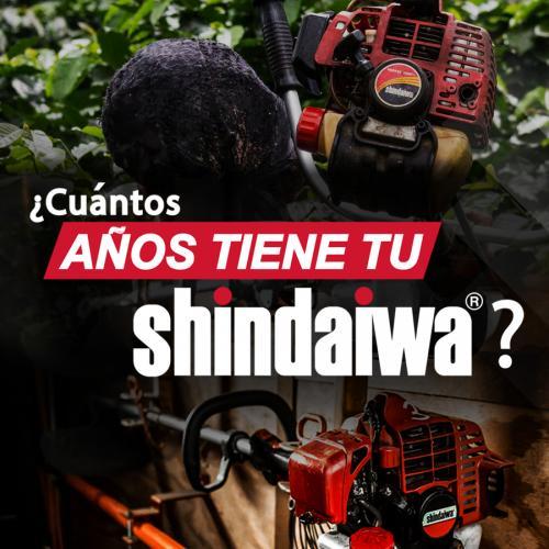 Shindaiwa-2019-02-08